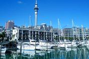 Pemerintah Sepakati Kerja Sama Dagang dengan Auckland Senilai 5,4 Juta Dolar AS