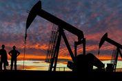 OPEC: Dominasi Minyak Serpih AS Ada Batas Waktunya