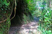 Jelajah Goa Jepang yang Tersembunyi di Lereng Selatan Merapi