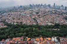 9 Taman di Jakarta untuk Melepas Bosan dan Penat Setelah Kerja