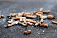 Ahli: Puntung Rokok Lebih Merusak Lingkungan Ketimbang Sedotan Plastik