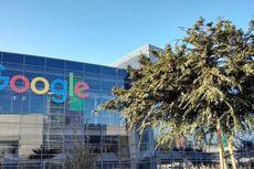 Foto Kompleks Kantor Baru Google, Berundak seperti Sawah