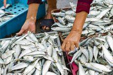 KKP Gandeng BUMN untuk Pemanfaatan Gudang Pendingin Ikan