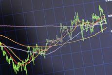 [POPULER MONEY] Investor Perorangan Dapat DIviden Rp 16,5 Miliar | Pembentukan Holding BUMN Asuransi
