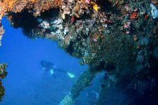 Cerita di Balik Destinasi Wisata Selat Lembeh dan Cagar Alam Tangkoko