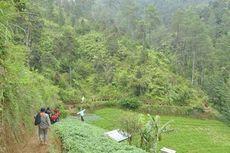 Sebelum Ditutup, Yuk Ikut Tanam Pohon dan Bersih-bersih Gunung Prau