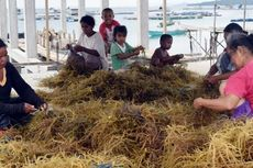 Putus Rantai Kemiskinan, Pemerintah Genjot Pembangunan SDM