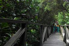 10 Ragam Wisata di Kalimantan Timur, Calon Lokasi Ibu Kota Negara
