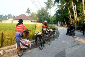 BPS: Jumlah Desa Tertinggal Berkurang Sebanyak 6.518