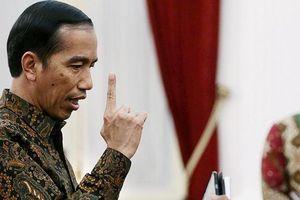 Soal Ribut Impor Beras, Jokowi Minta Menko Darmin Panggil Mendag dan Dirut Bulog