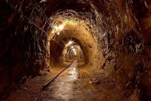 Dua Warga Palestina Tewas Keracunan Gas di Terowongan Perbatasan Gaza-Mesir