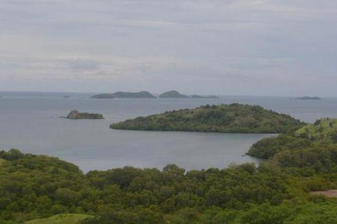 6 Komodo yang Gagal Diselundupkan, Tiba Kembali di Flores, NTT