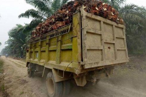 Kementan: Usulan Uni Eropa Mengganti Minyak Sawit dengan Nabati Tidak Tepat