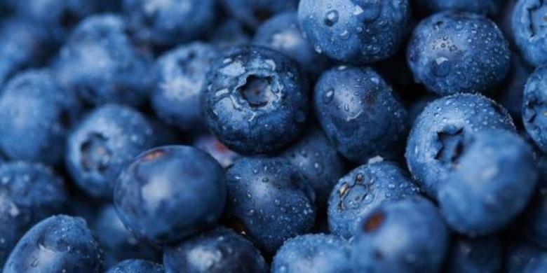 Tomat ungu seperti buah blueberry merupakan pangan rekayasa genetika hasil temuan ilmuwan Inggris.