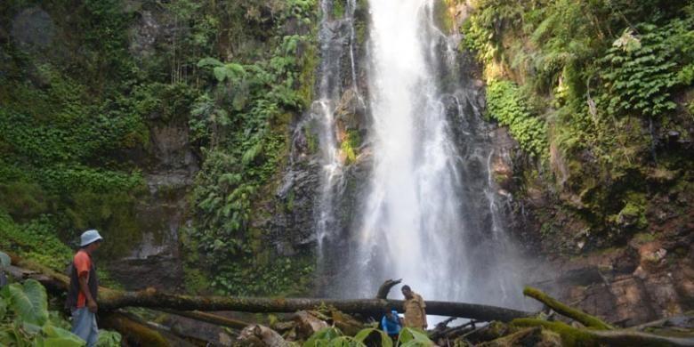 Air Terjun Cunca Rede di Kampung Ntaur, Desa Sano Lokom, Kecamatan Ranamese, Kabupaten Manggarai Timur, Nusa Tenggara Timur.