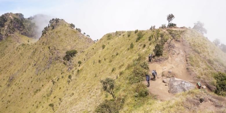 Jalur pendakian menuju Puncak Merbabu dilihat dari Puncak Syarif, 3.119 mdpl. Jalur terlihat seperti beberapa punuk unta yang bergabung.