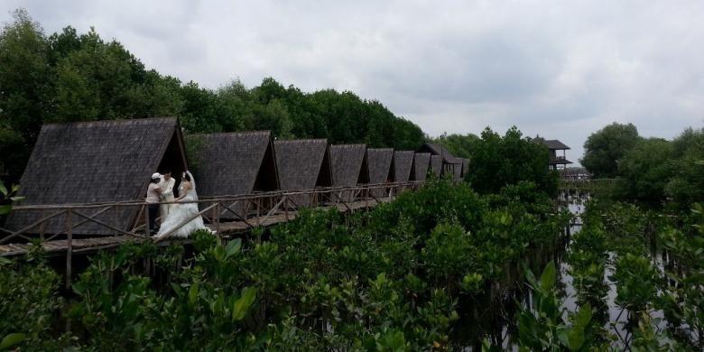 Taman Wisata Alam (TWA) Angke Kapuk,