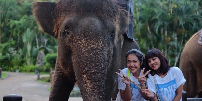 Peserta liburan gratis ke Bali TakeMeAnywhere berfoto dengan gajah di Elephant Safari Park, Desa Taro, Gianyar.