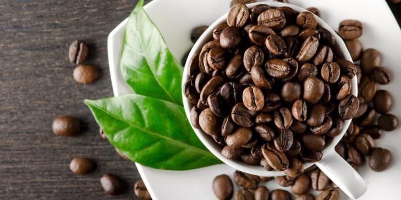 Ilustrasi kopi papua