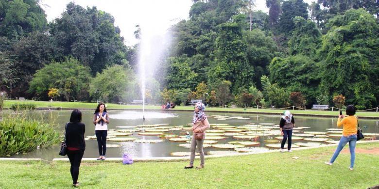 Salah satu spot berfoto atau selfie lainnya di Kebun Raya Bogor yaitu kolam teratai, di depan cafe Grand Garden. Banyak wisatawan yang berfoto di depan kumpulan bunga teratai dengan ait mancur setinggi 10 meter yang menambah keindahan.