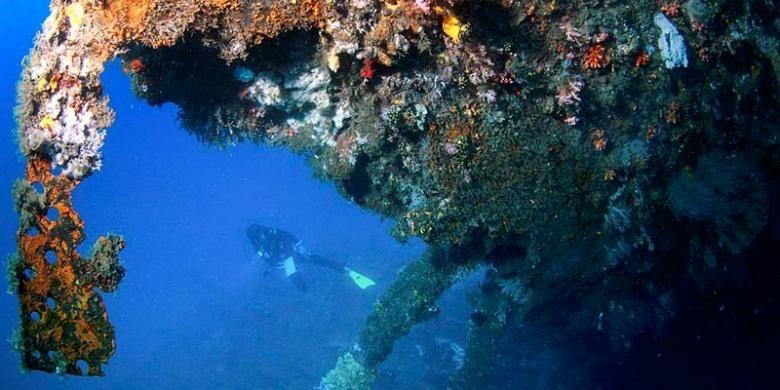 Terumbu karang tampak menutupi sejumlah besar bagian luar kapal Mawali yang terdampar di dasar laut perairan Selat Lembeh.