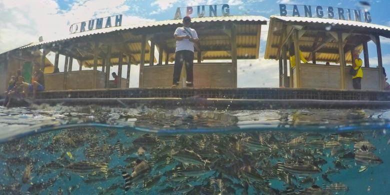 Bangsring Under Water di Pantai Bangsring yang dikelola kelompo nelayan Samudra Bhakti