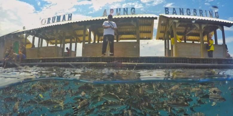 Rumah apung di Bangsring Underwater, Kabupaten Banyuwangi, Jawa Timur.