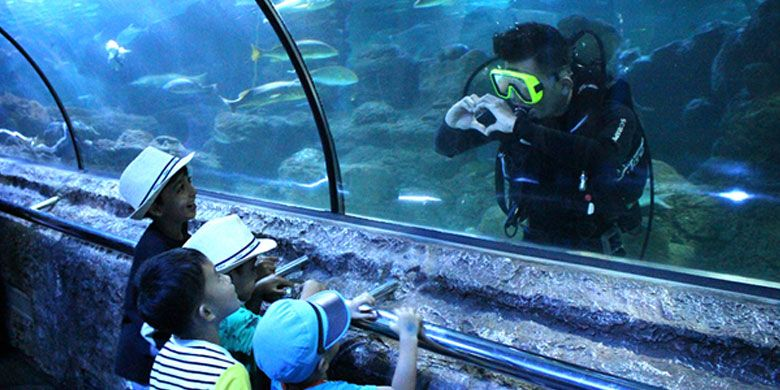 Wahana Under Water Tunnel di Seaworld Ancol.