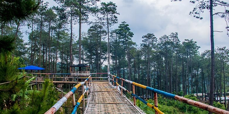 Wahana jembatan di Hutan Wisata Wonoasri Seper (WNS), Wonogiri