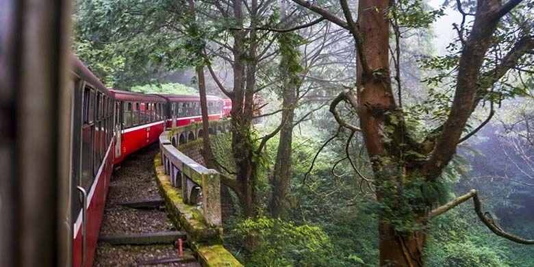 Perjalanan kereta api Alishan Forest Railway, Taiwan