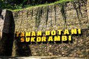 Liburan ke Jember, Jangan Lupa Mampir ke Taman Botani Sukorambi
