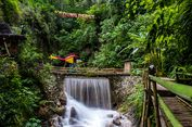 Segarnya Air Terjun Kedung Pedut, Pemandian Alami di Kulon Progo