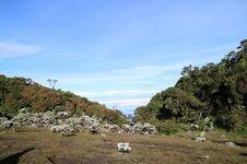 Mengenang Gunung Pangrango, Tempat Favorit Soe Hok-Gie Naik Gunung
