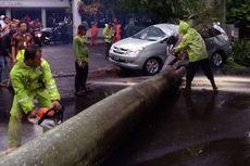 Angin Kencang, Sebuah Pohon Palem Tumbang Timpa Innova di Jalan Sriwijaya