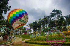 """4 Tips Liburan ke Taman Bunga Alamanda yang """"Instagramable"""" di Jogja"""