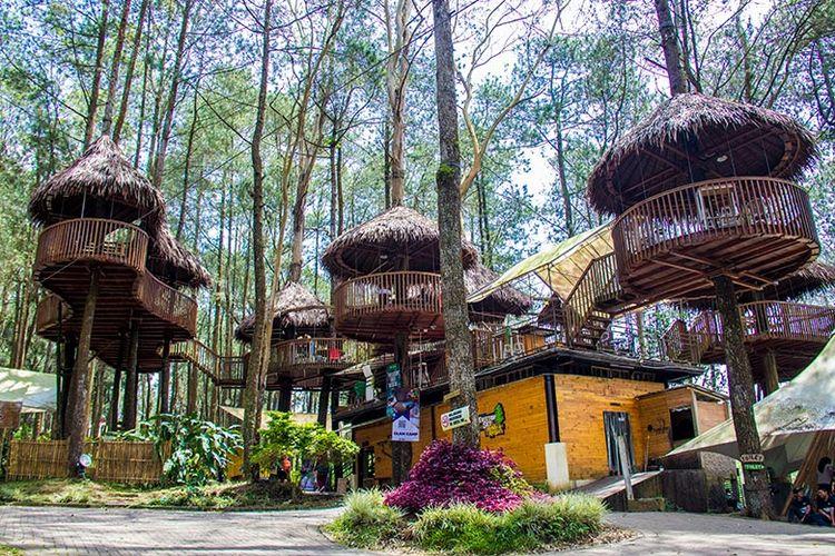 Kopeng Treetop Wisata Outbound Yang Instagramable Di Kaki Merbabu