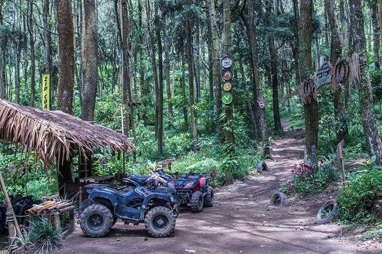 4 Aktivitas Wisata Yang Bisa Dilakukan Di Kopeng Treetop Semarang