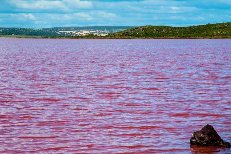 Danau Merah Mudah di Australia.