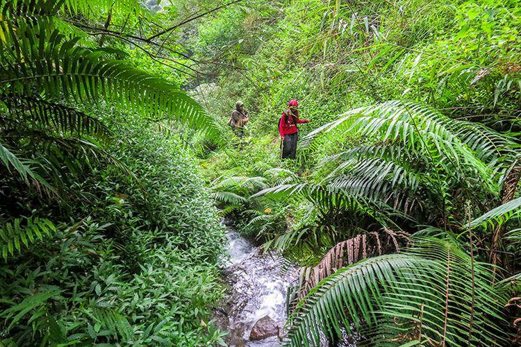 Perjalanan menuju Air Terjun Muncar Wonogiri melewati jalan setapak.