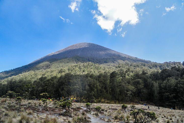 Puncak Mahameru Gunung Semeru dilihat dari Pos Kalimati.