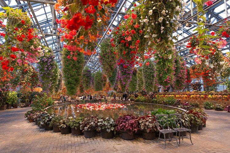 Obyek wisata Begonia Garden, Nagoya, Jepang.