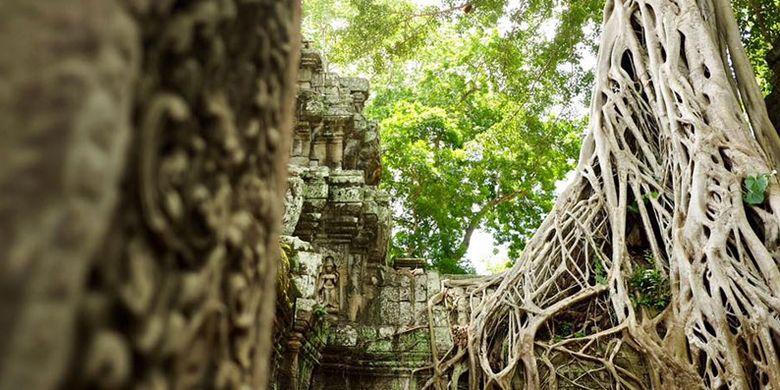 Kuil Ta Prohm di Kamboja.