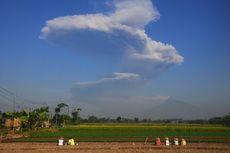 Obyek Wisata di Taman Nasional Gunung Merapi Ditutup Pasca-erupsi Freatik