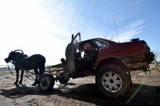 Petani Kreatif Padukan Mobil Rusak dengan Kuda Jadi