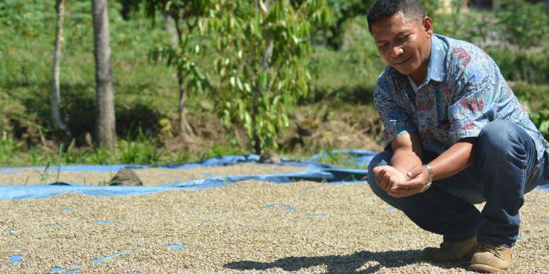 Seorang pengusaha kopi Lembu Nai sedang jemur kopi di Kampung Pelus, Kecamatan Pocoranaka, Kabupaten Manggarai Timur, Flores, Nusa Tenggara Timur pertengahan April 2018.