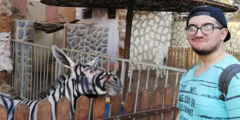 Foto seekor keledai yang dicat supaya mirip zebra di kebun binatang di Kairo, Mesir, ini menjadi viral. (Facebook/Mahmoud Sarhan)