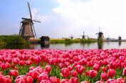 Mau Kuliah di 'Negeri Dongeng' Belanda? Simak Pilihan Beasiswa Ini