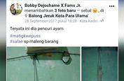 Viral Foto Kucing Digantung gara-gara Curi Ayam Goreng, Hoaks atau Fakta?