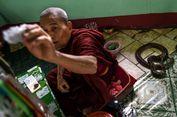 Kuil Buddha di Myanmar Ini Jadi Nirwana bagi Ular Piton