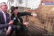 Reporter TV Basah Kuyup Dikencingi Singa di Tengah Wawancara